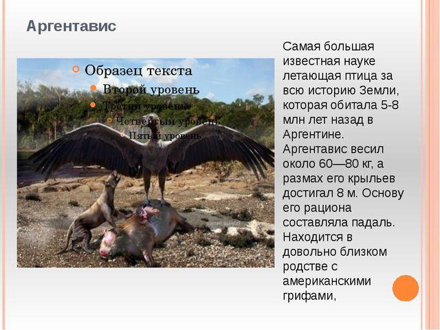 Аргентавис Самая большая известная науке летающая птица за всю историю Земли,...