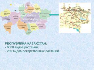 РЕСПУБЛИКА КАЗАХСТАН: - 6000 видов растений; - 250 видов лекарственных расте