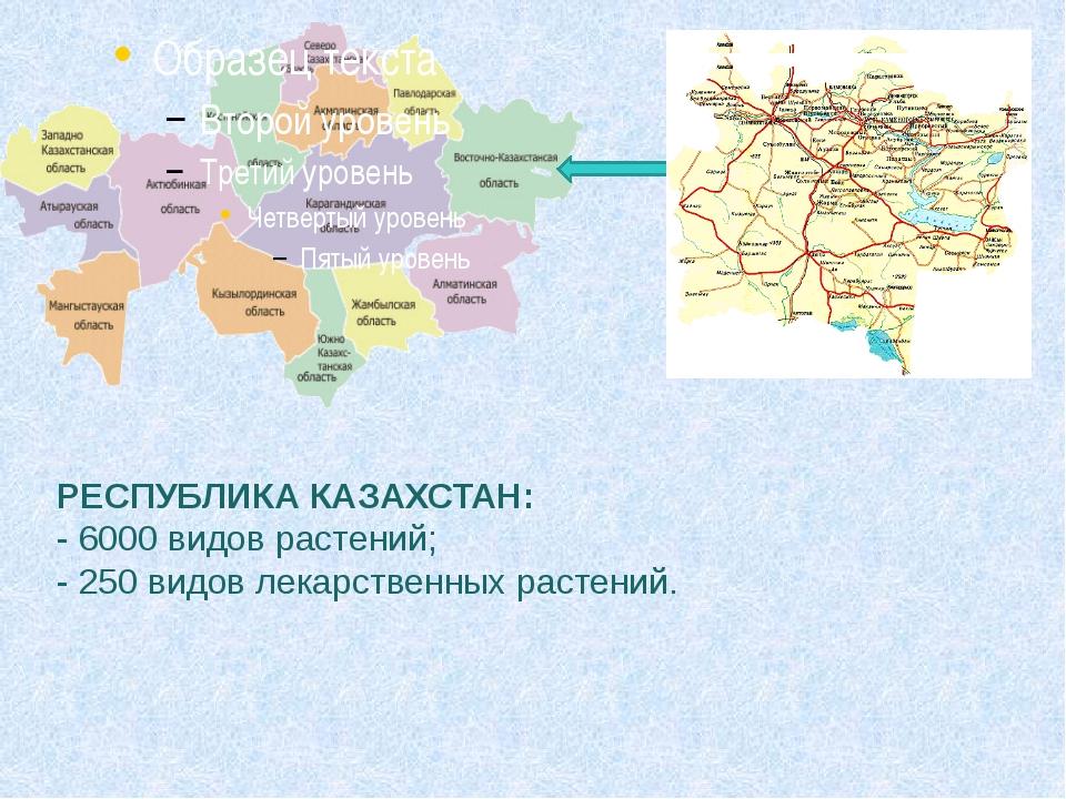РЕСПУБЛИКА КАЗАХСТАН: - 6000 видов растений; - 250 видов лекарственных расте...