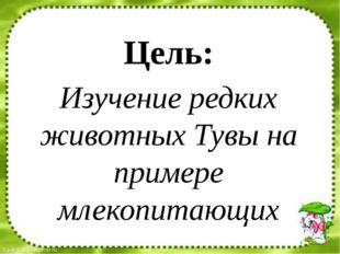 Цель: Изучение редких животных Тувы на примере млекопитающих