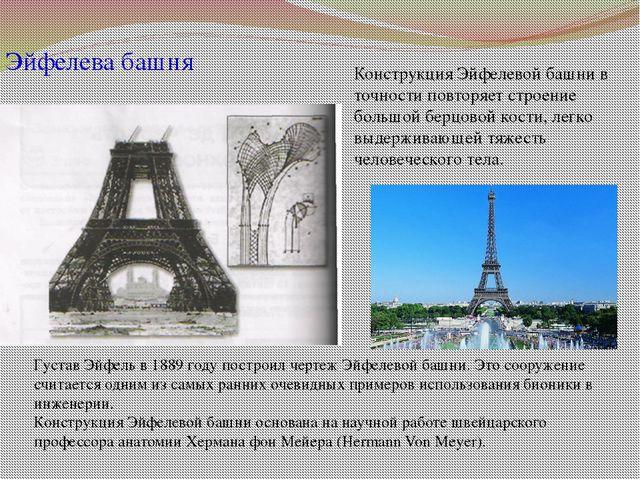 Эйфелева башня Конструкция Эйфелевой башни в точности повторяет строение боль...