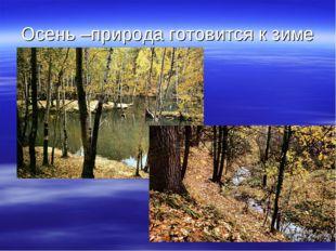 Осень –природа готовится к зиме