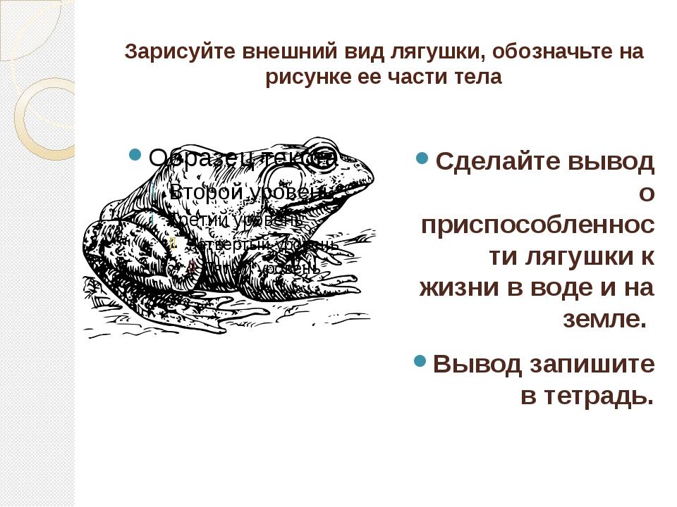 Зарисуйте внешний вид лягушки, обозначьте на рисунке ее части тела Сделайте в...