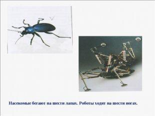 Насекомые бегают на шести лапах. Роботы ходят на шести ногах.