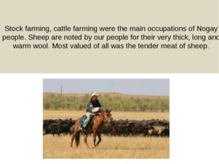 Stock farming, cattle farming were the main occupations of Nogay people. Shee