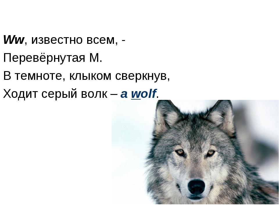 Ww, известно всем, - Перевёрнутая M. В темноте, клыком сверкнув, Ходит серый...