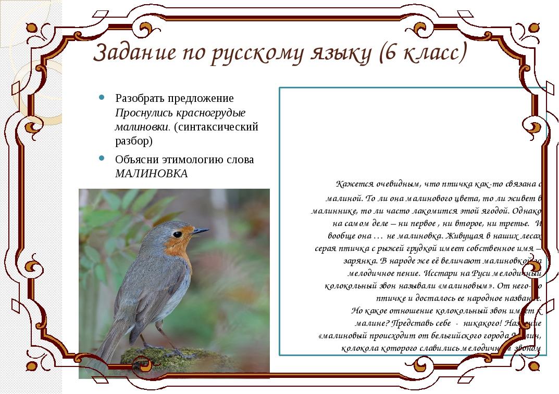 Задание по русскому языку (6 класс) Разобрать предложение Проснулись красногр...