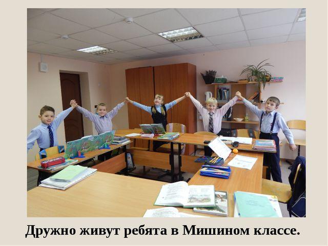 Дружно живут ребята в Мишином классе.