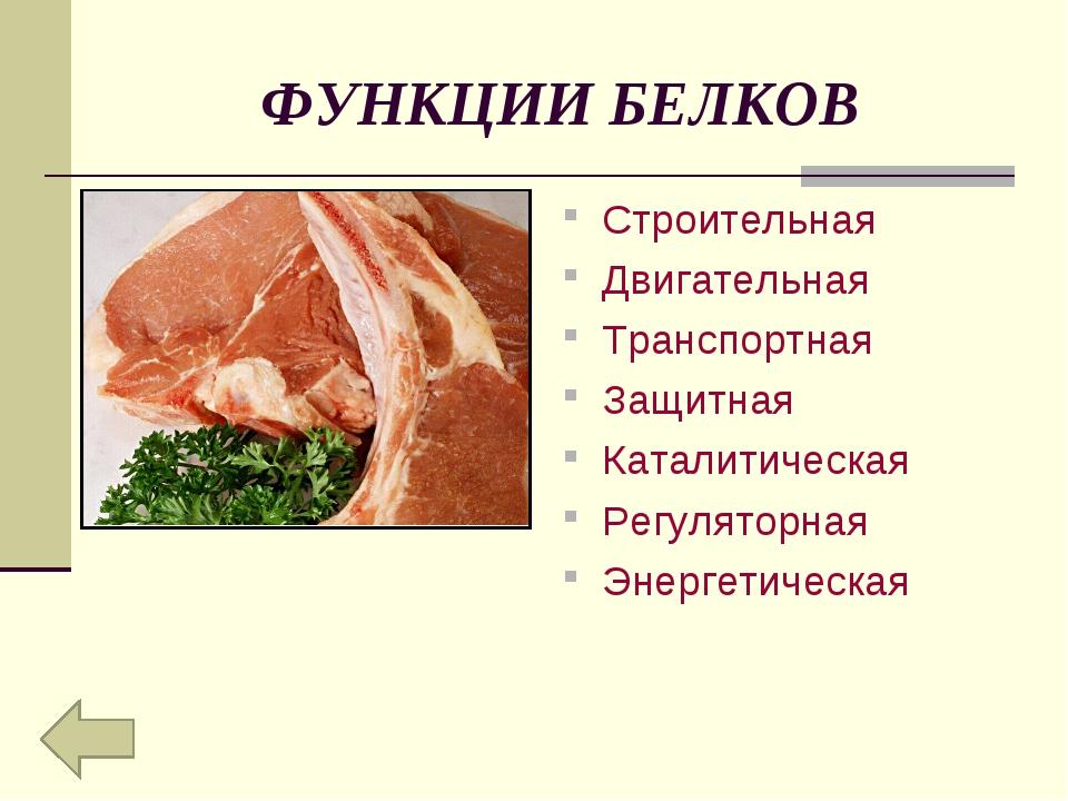 ФУНКЦИИ БЕЛКОВ Строительная Двигательная Транспортная Защитная Каталитическая...