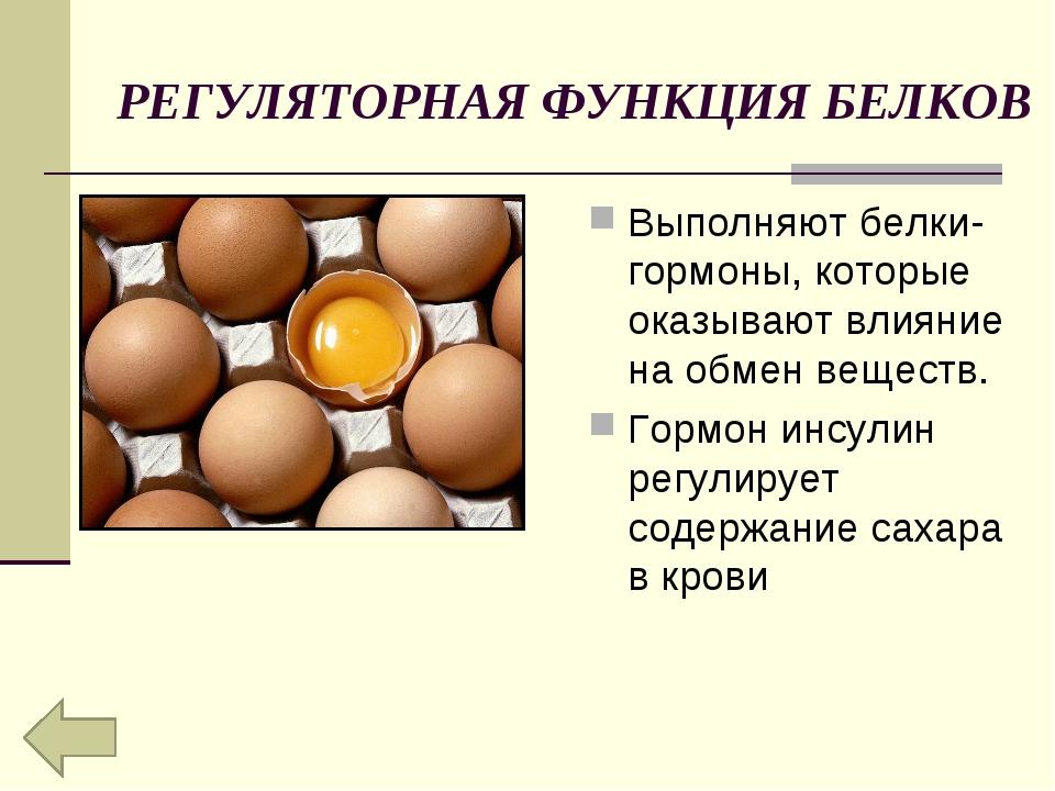 РЕГУЛЯТОРНАЯ ФУНКЦИЯ БЕЛКОВ Выполняют белки-гормоны, которые оказывают влияни...