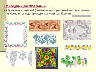 Природный растительный Изображение сочетаний (стилизованных) растений: листье