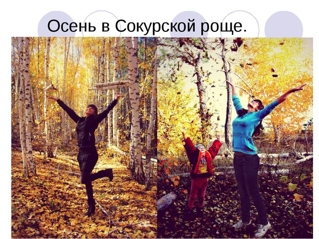 Осень в Сокурской роще.