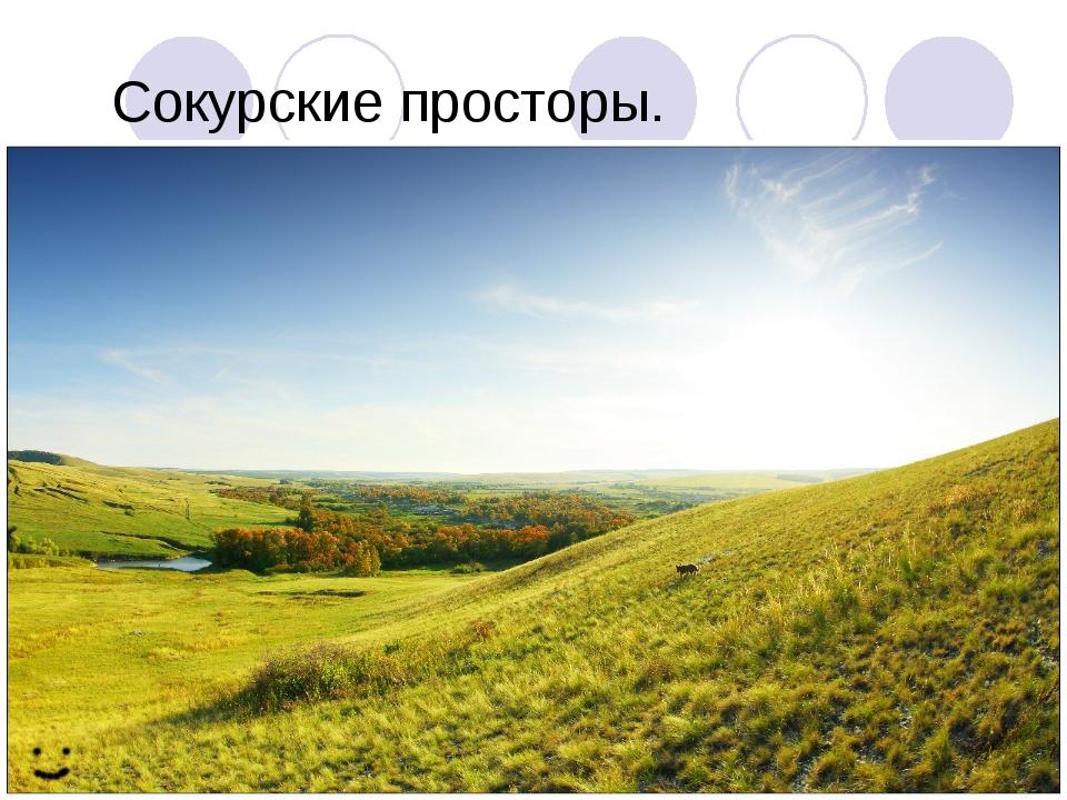Сокурские просторы.