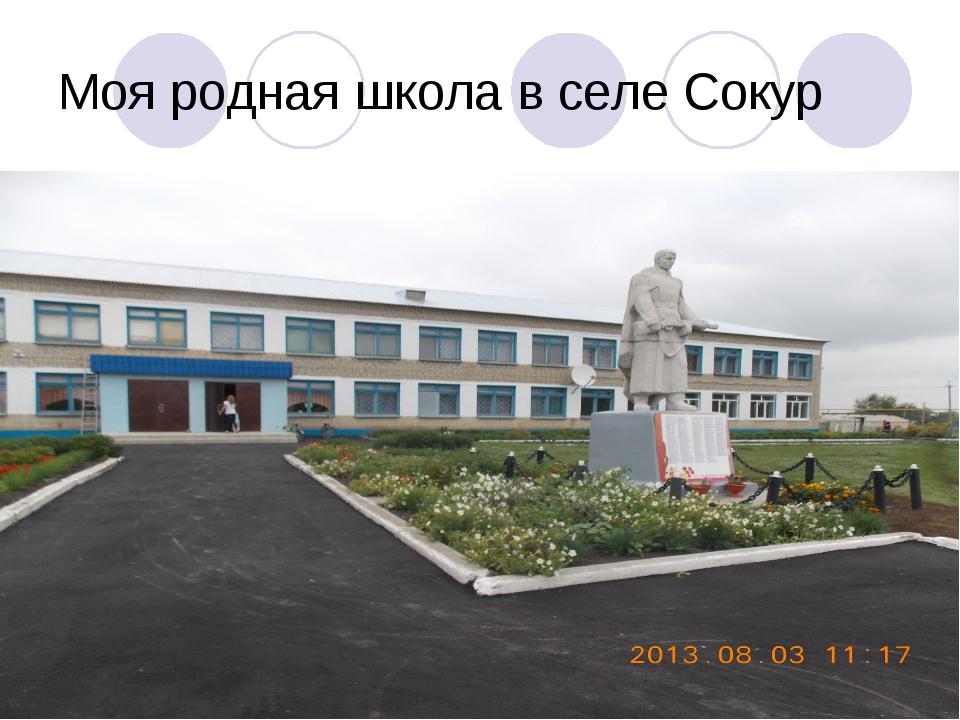 Моя родная школа в селе Сокур