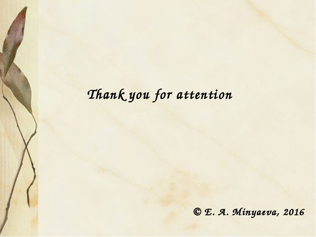 Thank you for attention © E. A. Minyaeva, 2016