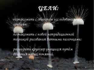 ЦЕЛИ: познакомить с объектом исследования – грибами; познакомить с новой нетр