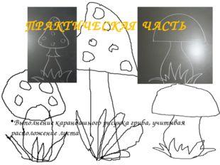 ПРАКТИЧЕСКАЯ ЧАСТЬ Выполнение карандашного рисунка гриба, учитывая расположен