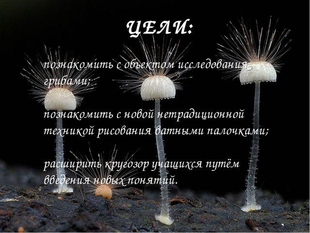 ЦЕЛИ: познакомить с объектом исследования – грибами; познакомить с новой нетр...