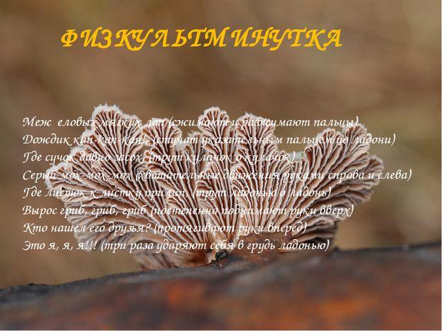 ФИЗКУЛЬТМИНУТКА Меж еловых мягких лап (сжимают и разжимают пальцы) Дождик ка...