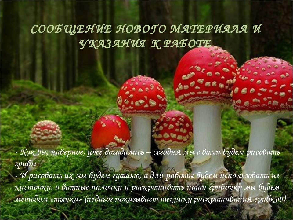 - Как вы, наверное, уже догадались – сегодня мы с вами будем рисовать грибы -...