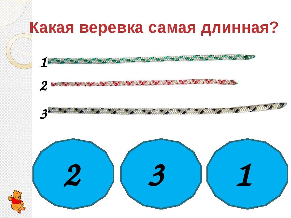 Какая веревка самая длинная? 2 3 1 1 2 3