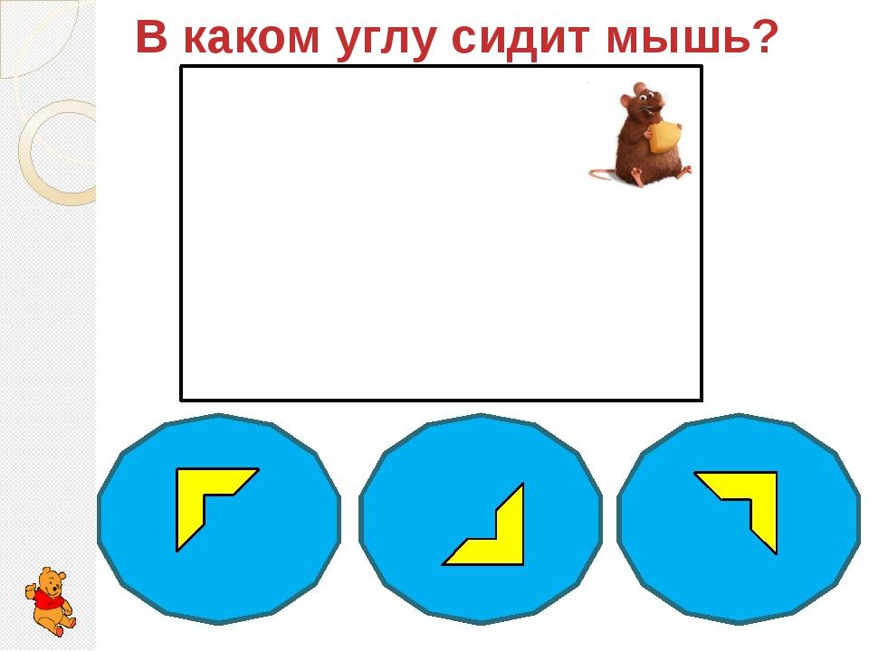 В каком углу сидит мышь?