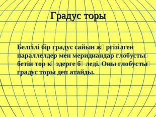 Градус торы Белгілі бір градус сайын жүргізілген параллелдер мен меридиандар