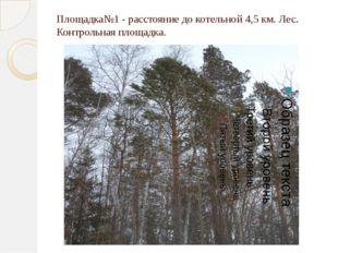 Площадка№1 - расстояние до котельной 4,5 км. Лес. Контрольная площадка.