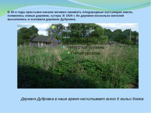 В 20-е годы крестьяне начали активно занимать плодородные пустующие земли, по