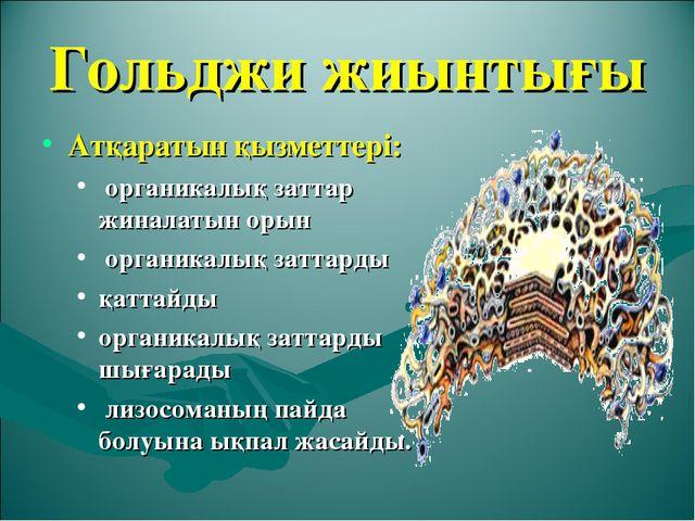 Гольджи жиынтығы Атқаратын қызметтері: органикалық заттар жиналатын орын орга...