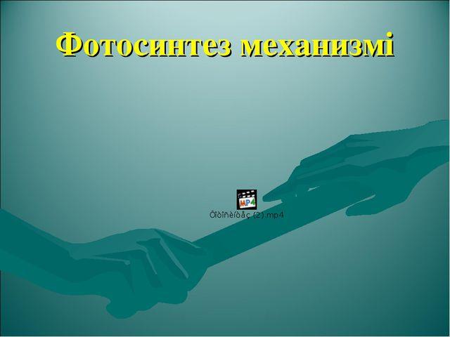 Фотосинтез механизмі