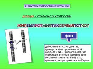 1. ВНУТРИХРОМОСОМНЫЕ МУТАЦИИ ДЕЛЕЦИЯ – УТРАТА ЧАСТИ ХРОМОСОМЫ Делеция белка C