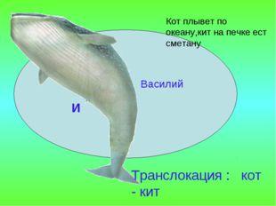 Василий И Транслокация : кот - кит Кот плывет по океану,кит на печке ест смет