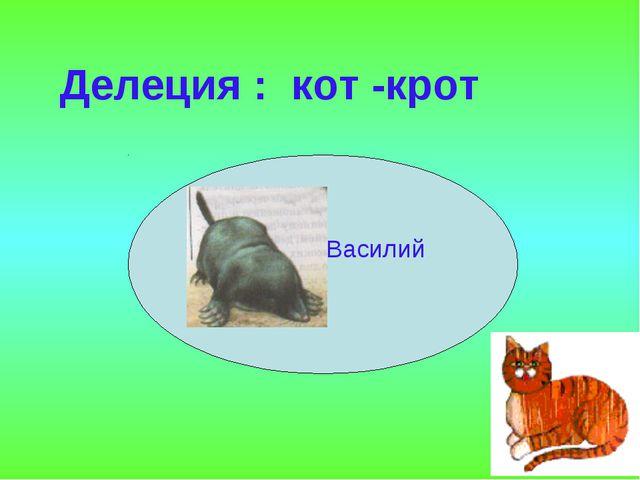 Василий Р Делеция : кот -крот