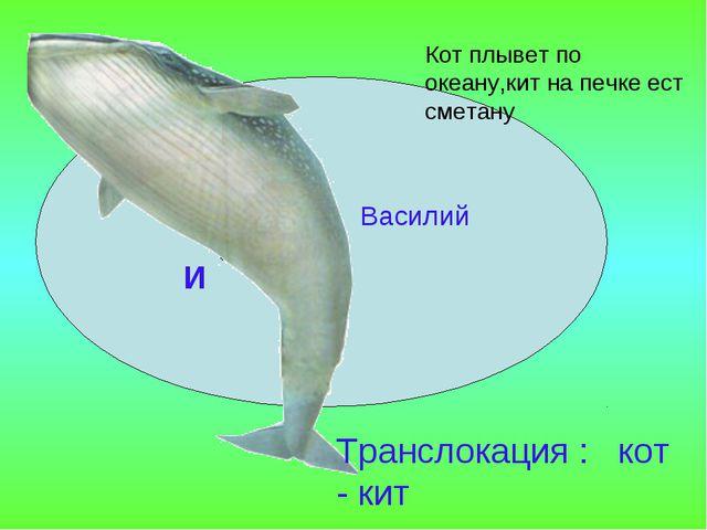 Василий И Транслокация : кот - кит Кот плывет по океану,кит на печке ест смет...