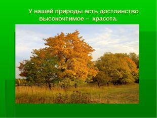 У нашей природы есть достоинство высокочтимое – красота.