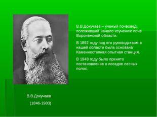В.В.Докучаев (1846-1903) В.В.Докучаев – ученый почвовед, положивший начало и