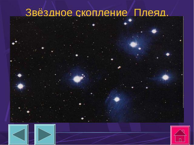 Звёздное скопление Плеяд.
