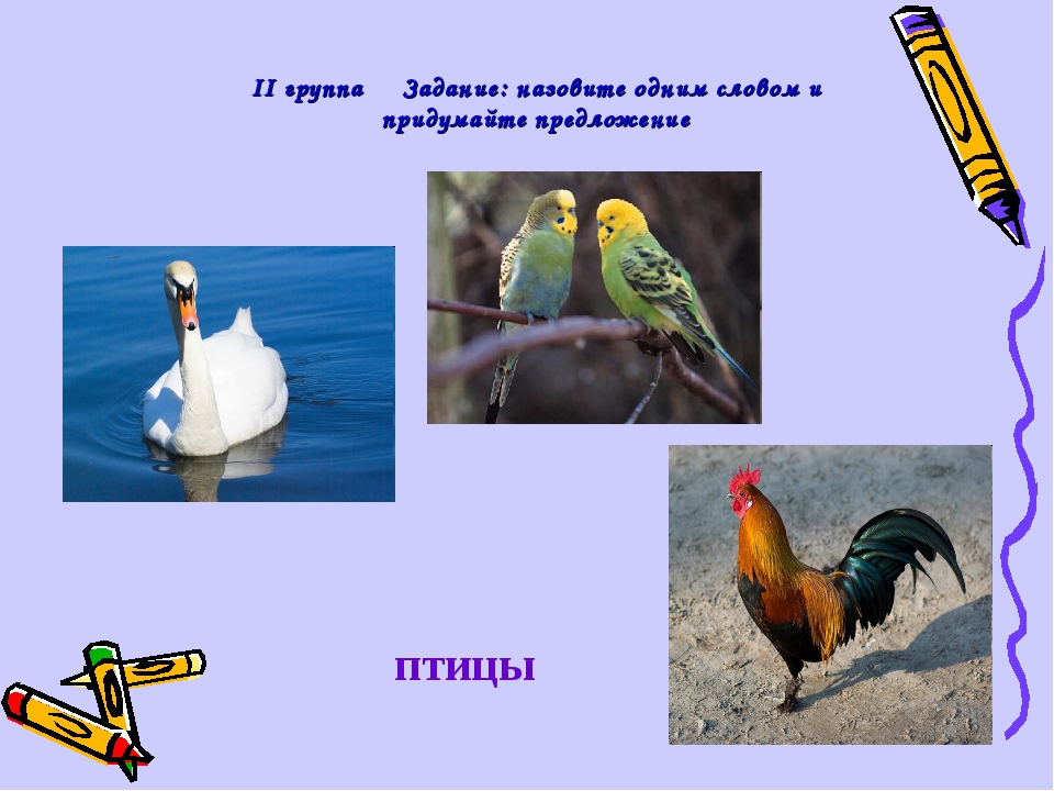 ІІ группа Задание: назовите одним словом и придумайте предложение птицы