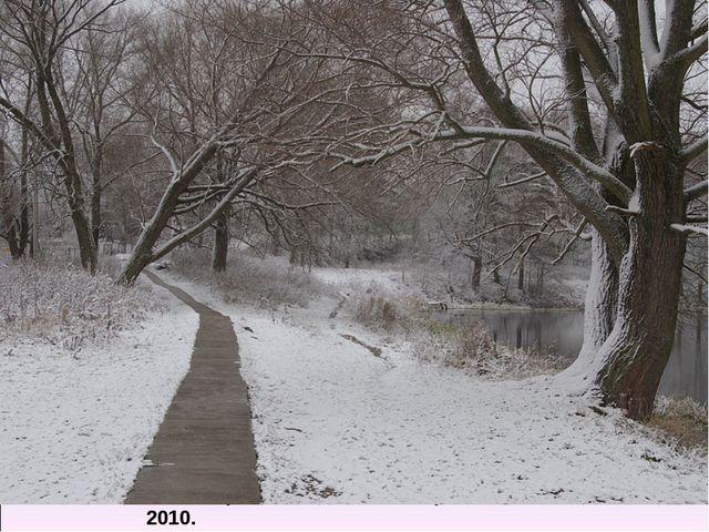 Первый снег осени. В.Ермаков. 2010.