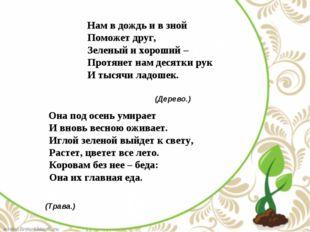 Нам в дождь и в зной Поможет друг, Зеленый и хороший – Протянет нам десят