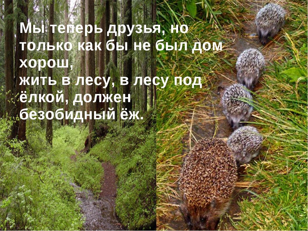 Мы теперь друзья, но только как бы не был дом хорош, жить в лесу, в лесу под...