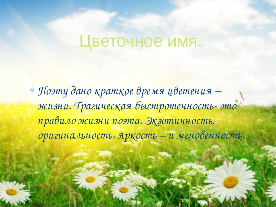 Поэту дано краткое время цветения – жизни. Трагическая быстротечность- это пр...