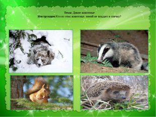 Тема: Дикие животные Инструкция:Кто из этих животных зимой не впадает в спяч
