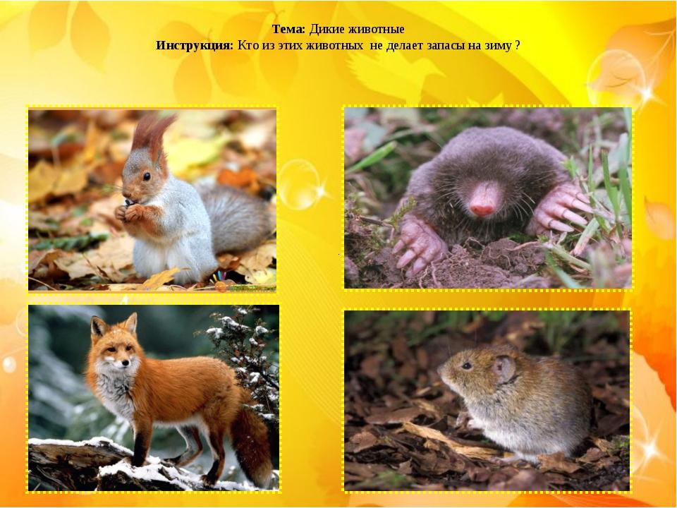 Тема: Дикие животные Инструкция: Кто из этих животных не делает запасы на зи...