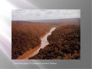 Панорама реки Усумасинты в штате Чьяпас