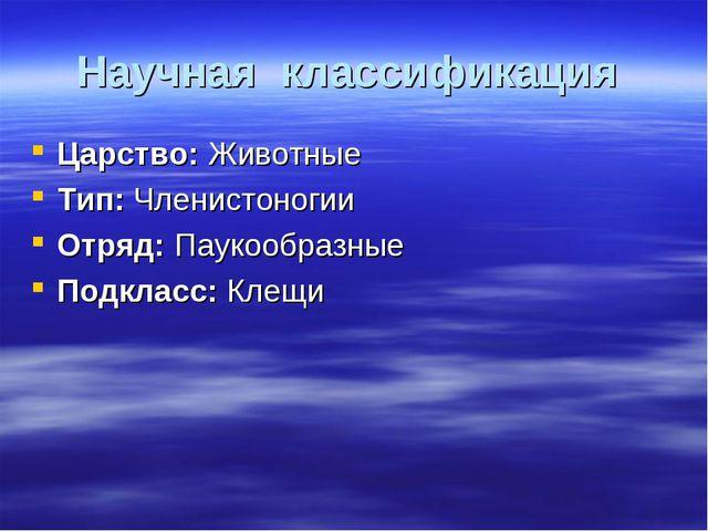 Научная классификация Царство: Животные Тип: Членистоногии Отряд: Паукообразн...