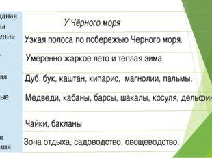 У Чёрного моря Узкая полоса по побережью Черного моря. Умеренно жаркое лето и