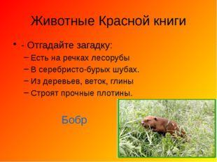 Животные Красной книги - Отгадайте загадку: Есть на речках лесорубы В серебри