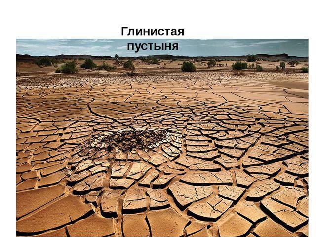 Глинистая пустыня
